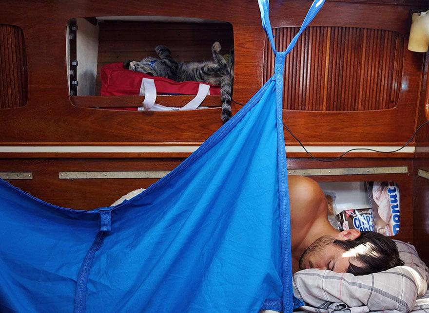 chat sur un voilier voyage