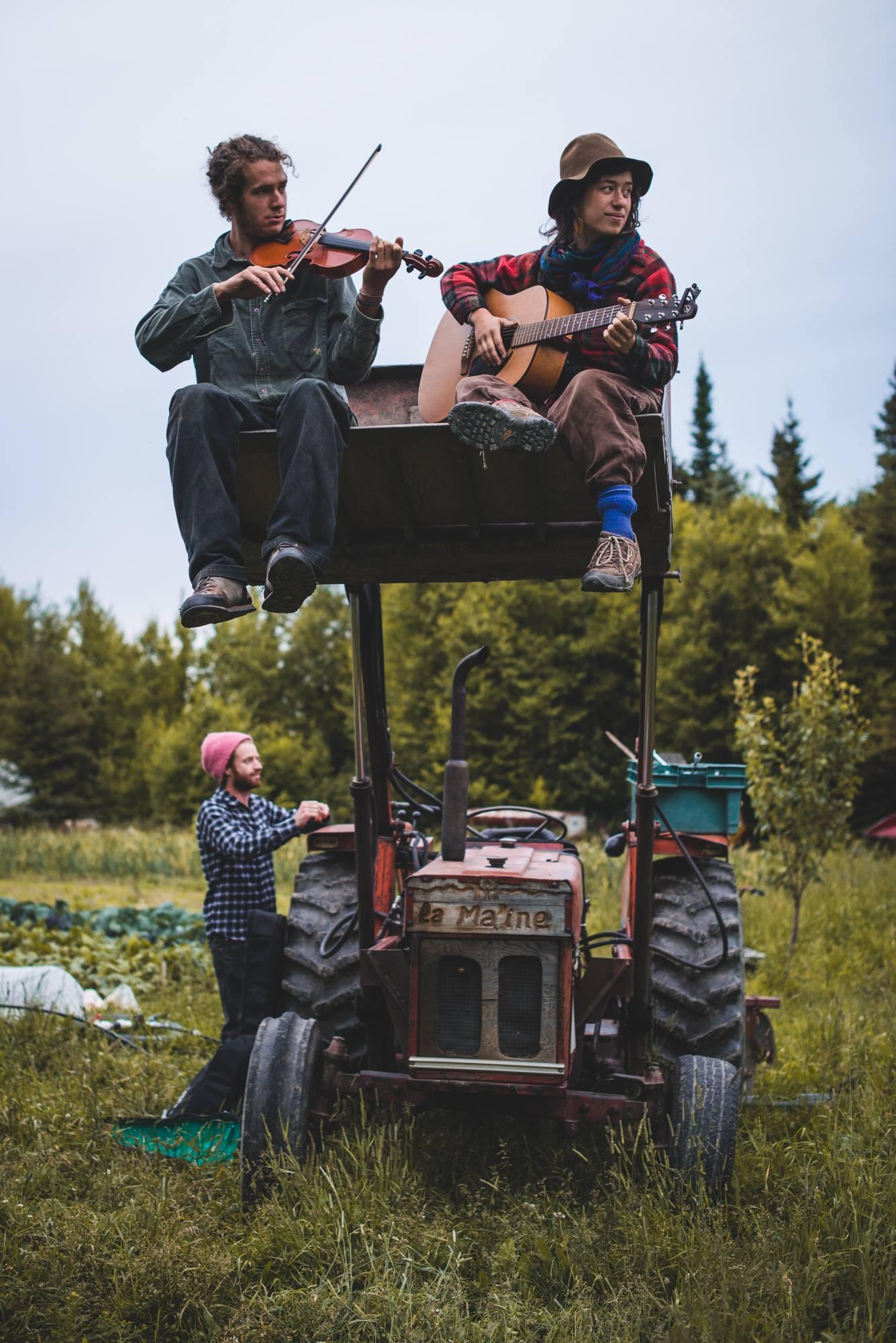 permaculture communauté