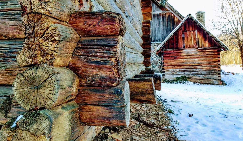 vivre en autonomie cabane en bois