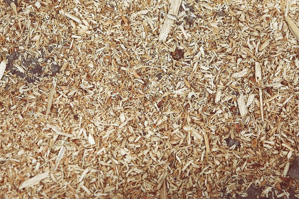 sciure de bois pour les toilettes sèches