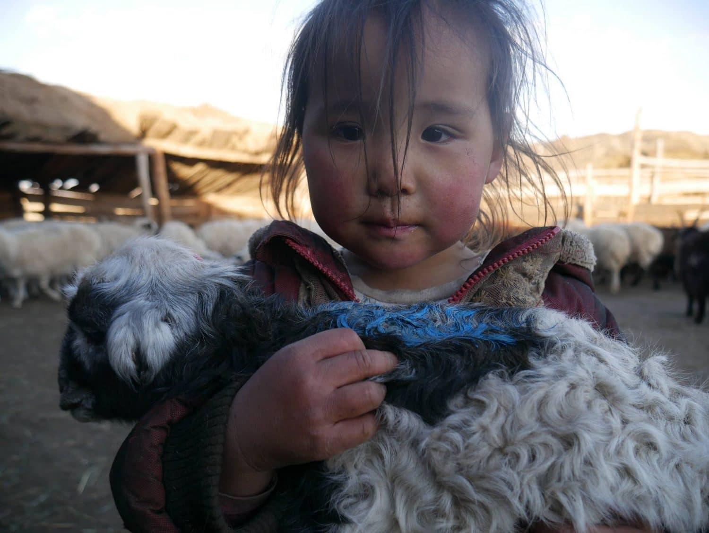 rencontrer les nomades en Mongolie