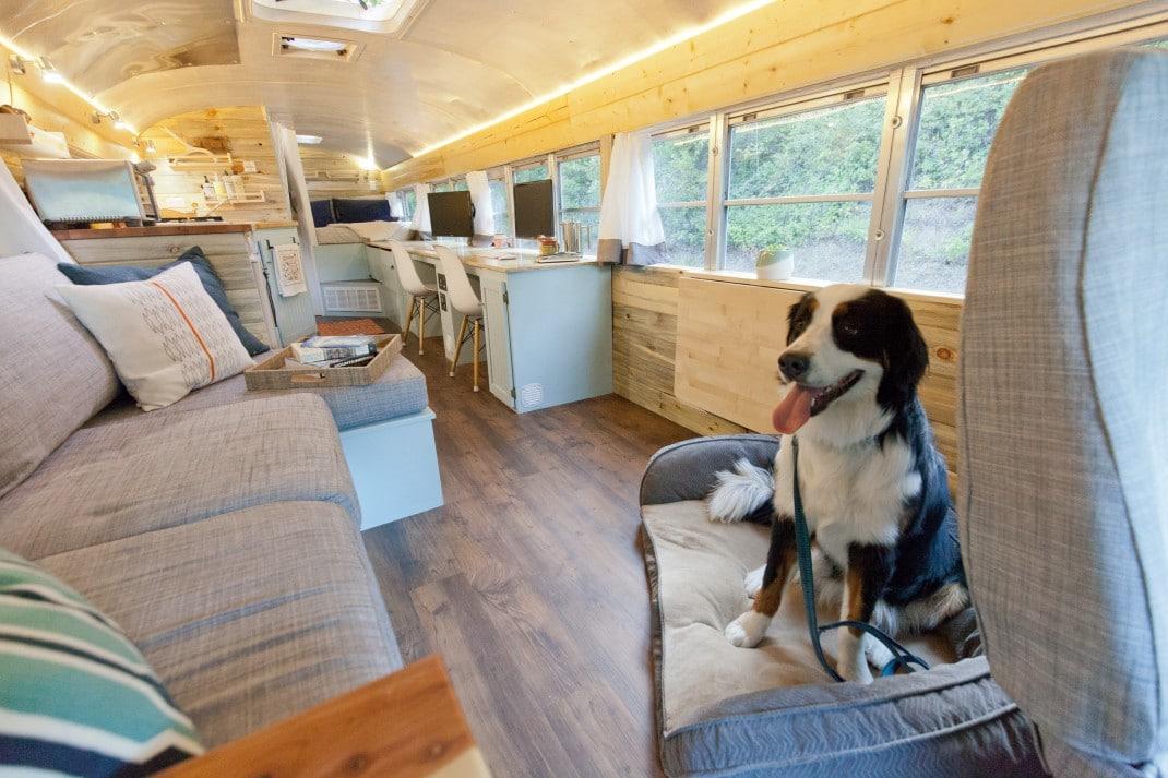 chien bus aménagé