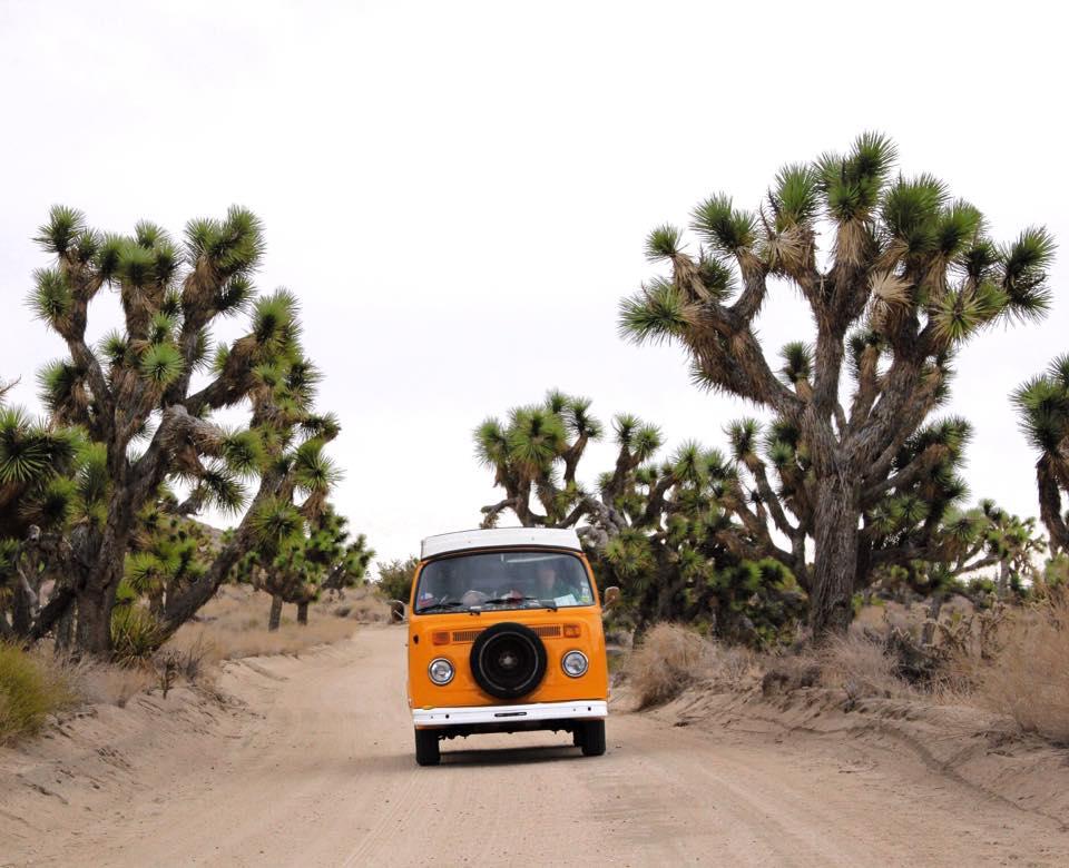 vivre en van en couple VW orange