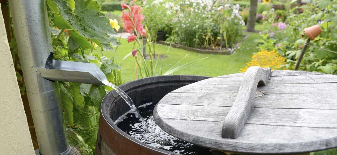 autonome en eau : recupération eau de pluie