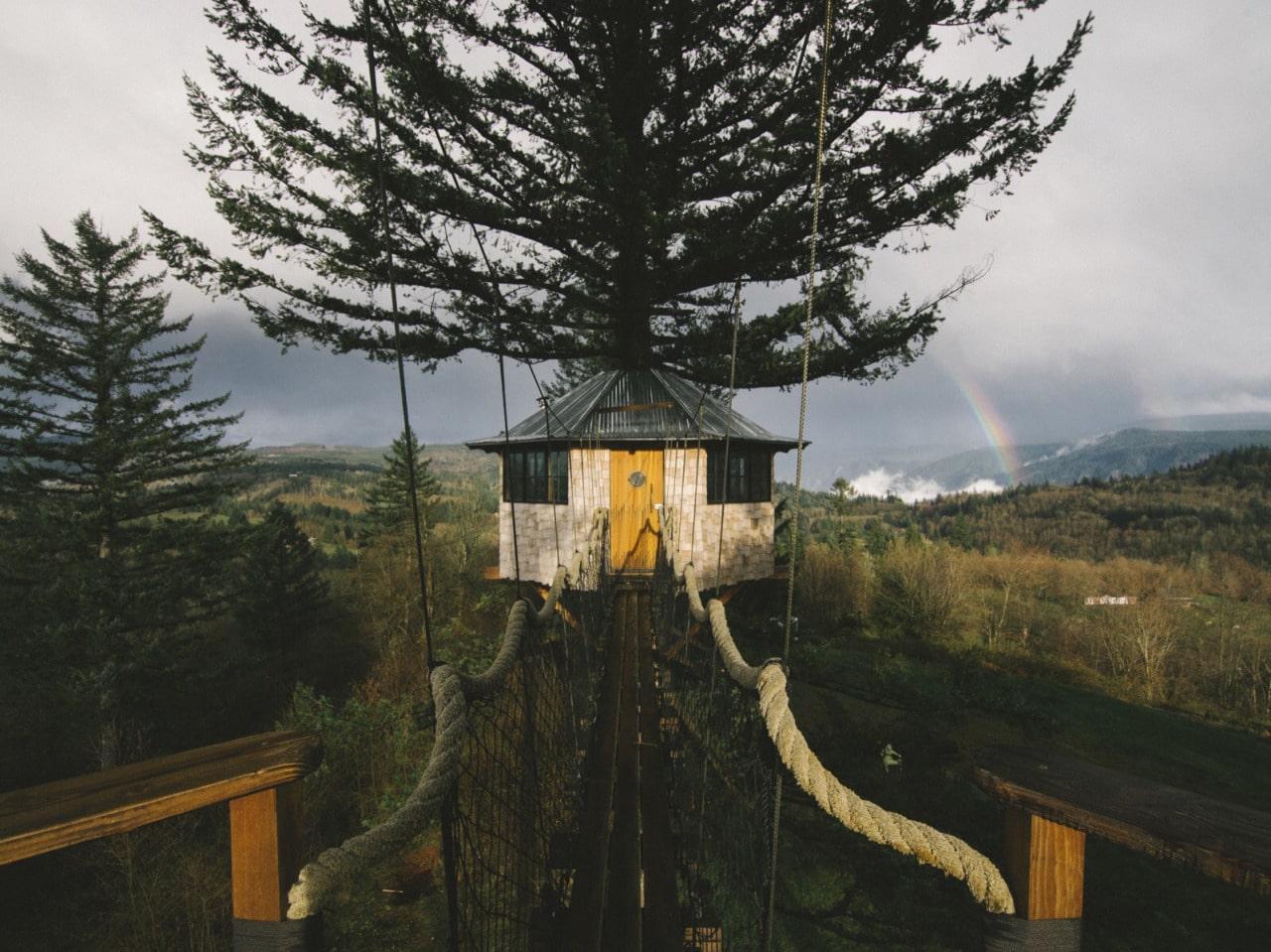 Vivre dans une cabane au milieu de la nature : Foster Huntington