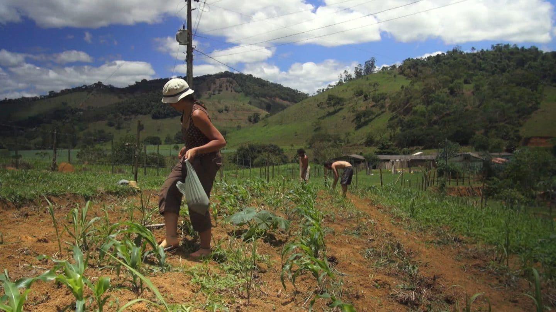 agriculture écovillage