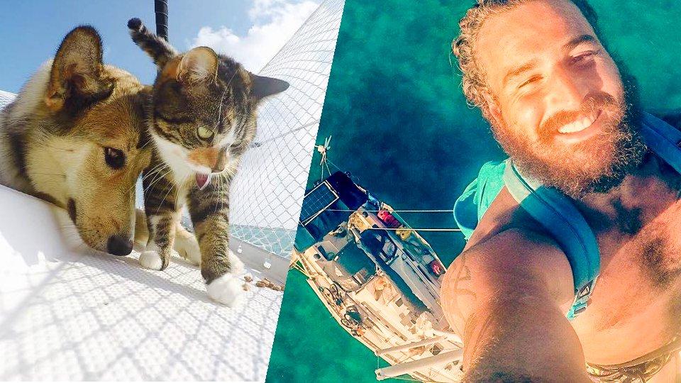 Ils ont tout plaqué pour voyager à bord d'un voilier avec un chien et un chat
