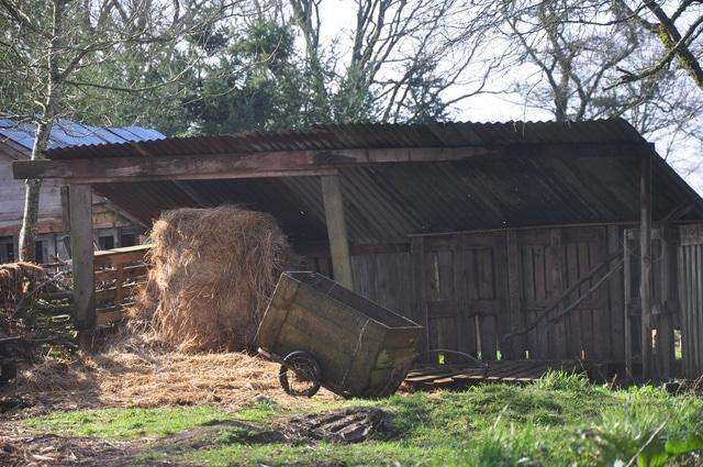 vivre en autonomie en France dans une ferme