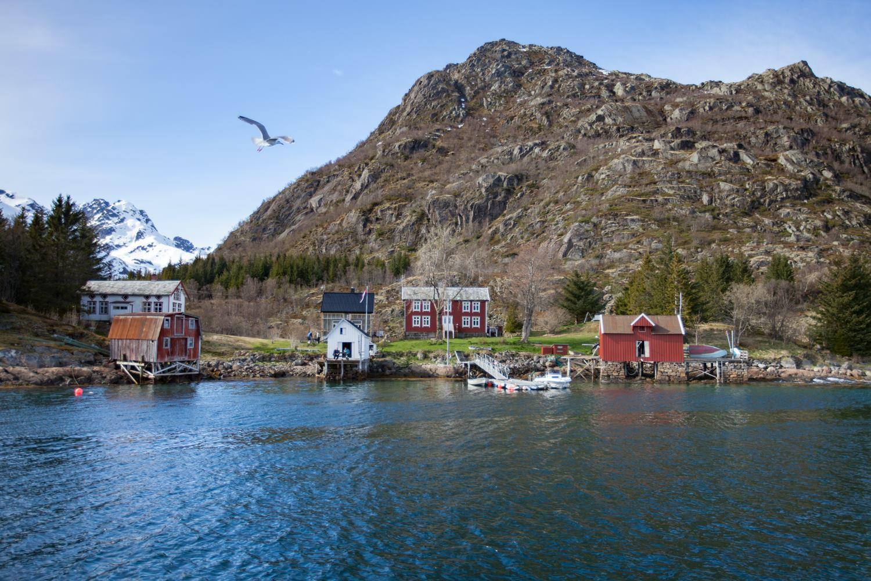 Trollfjord cabane pecheur