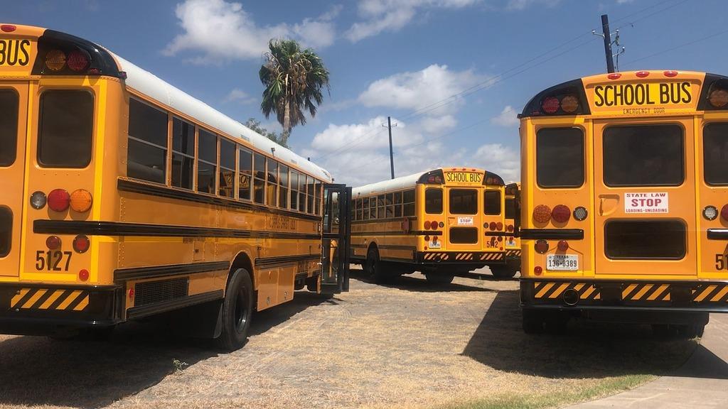 importer bus scolaire