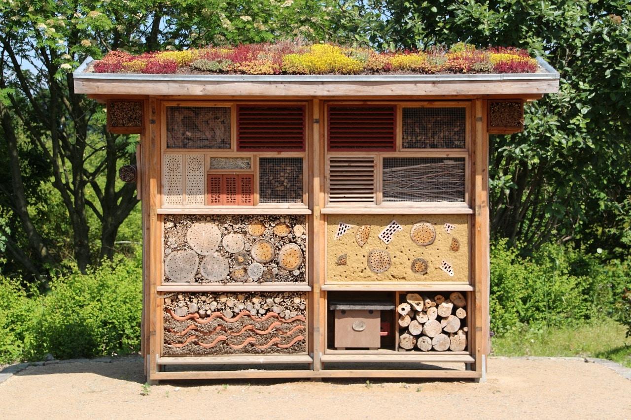 débuter en permaculture hotels à insectes