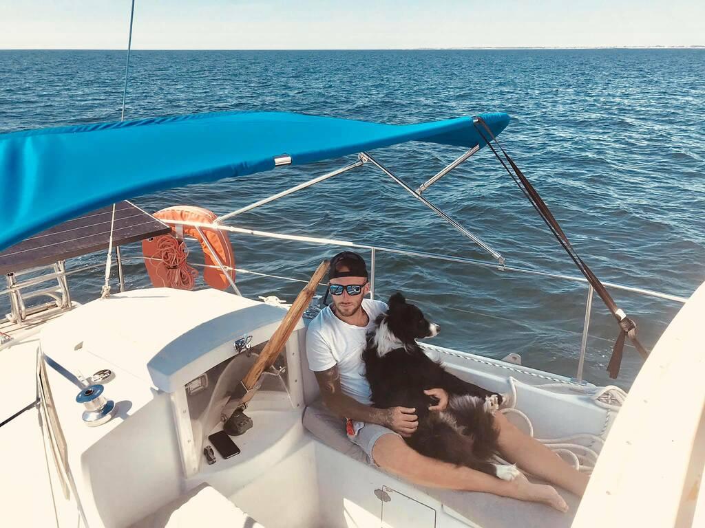 voyager avec chien