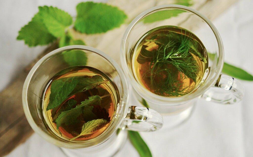 herbes médicinales tisane