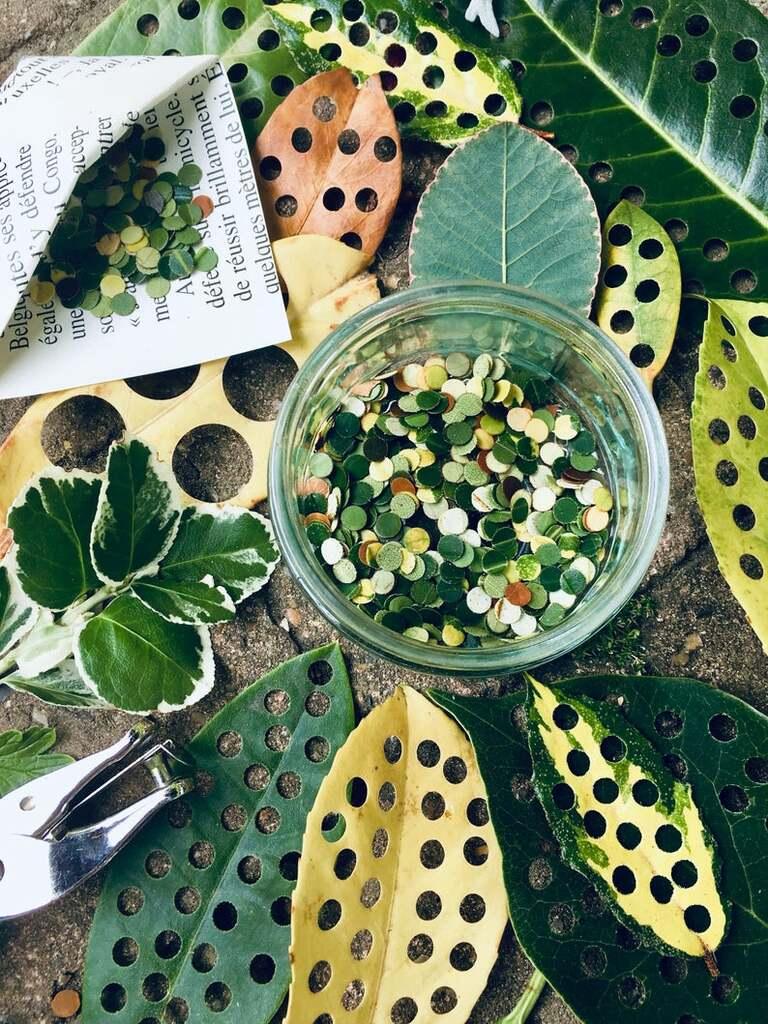 confettis biodégradable feuilles