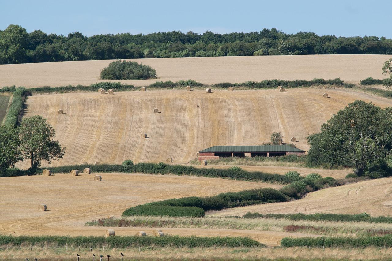 Construire sur un terrain agricole : est-ce que je peux m'installer ?